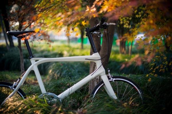 2015年 ,自行车2.0时代