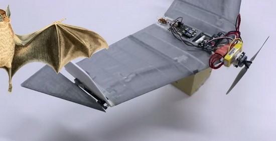 蝙蝠无人机:能飞能爬