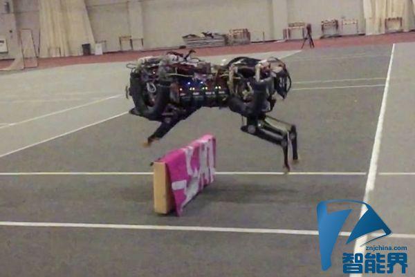 这个猎豹机器人想和刘翔一较高下