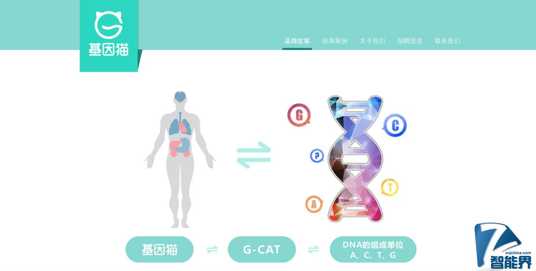 """基因检测可能要打价格战了,全环节自研的 """"基因猫"""" 能突围而出吗"""