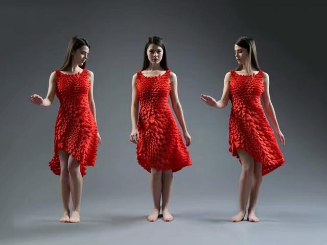 够fashion 1600片花瓣的3D打印裙