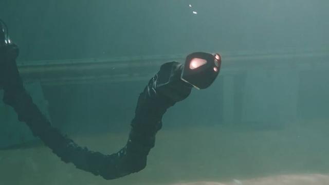 """潜水时你最不想见到的""""蛇"""" 但它是个机器人"""