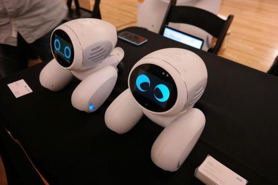 智能看门狗:Domgy宠物机器人可用于家居防盗