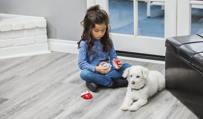 【智能界大百科】远程调戏你的爱宠 智能球Pebby让你的狗狗再也不会空虚寂寞