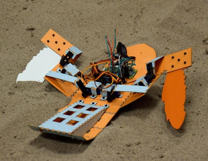 """科研人员打造""""地雷清除者""""海龟机器人"""