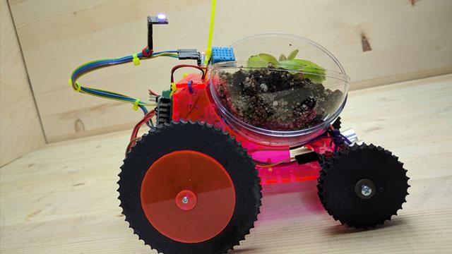 Plantoid驮着植物到处走的机器人